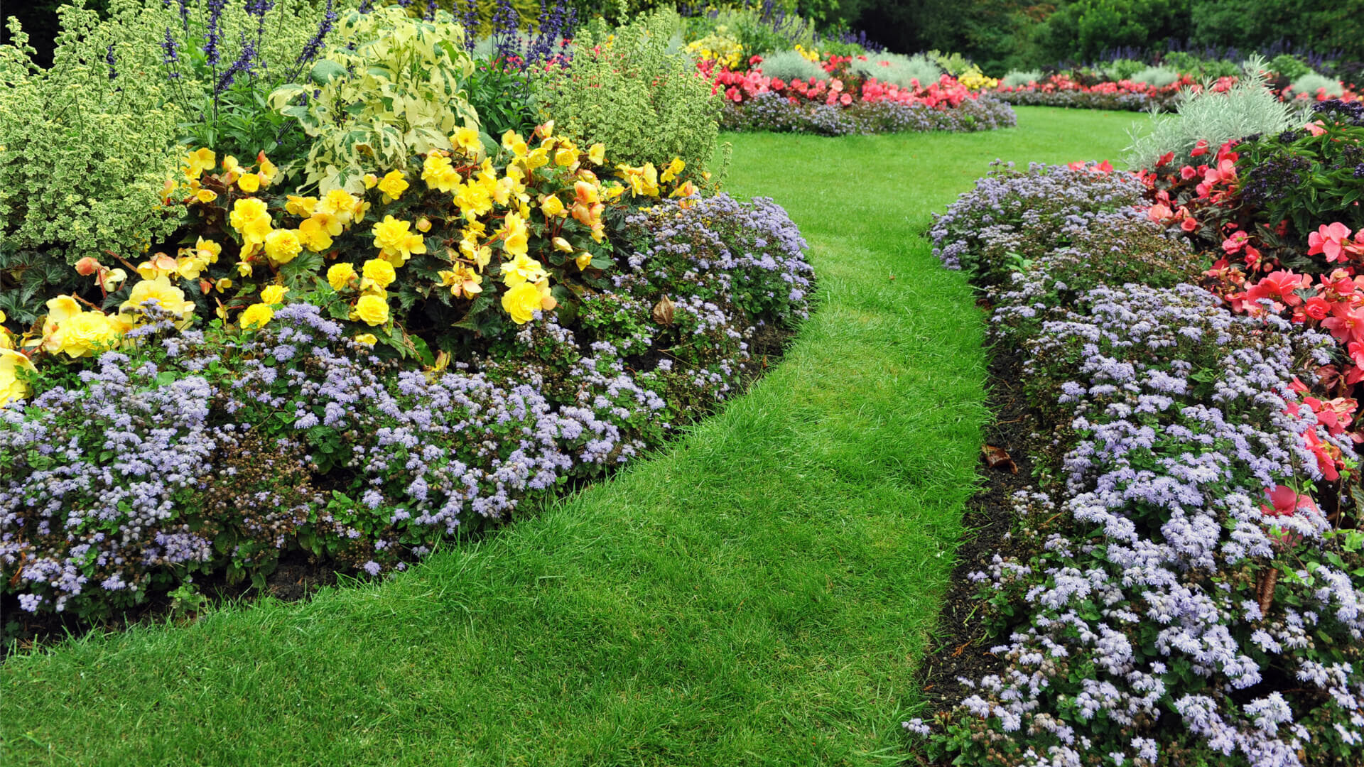 The Ecological Advantages Of Water Gardens